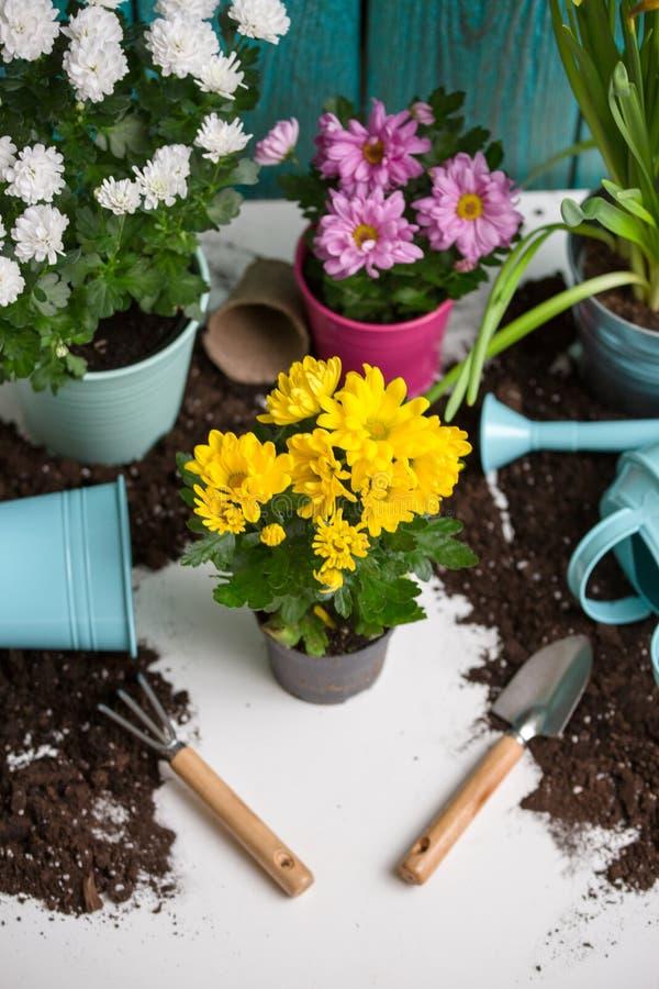 Bilden av jord som bevattnar kan, blomkrukan, skyffel, att kratta royaltyfri bild