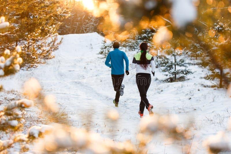 Bilden från baksida av idrottsman nen för spring två i vinter parkerar fotografering för bildbyråer