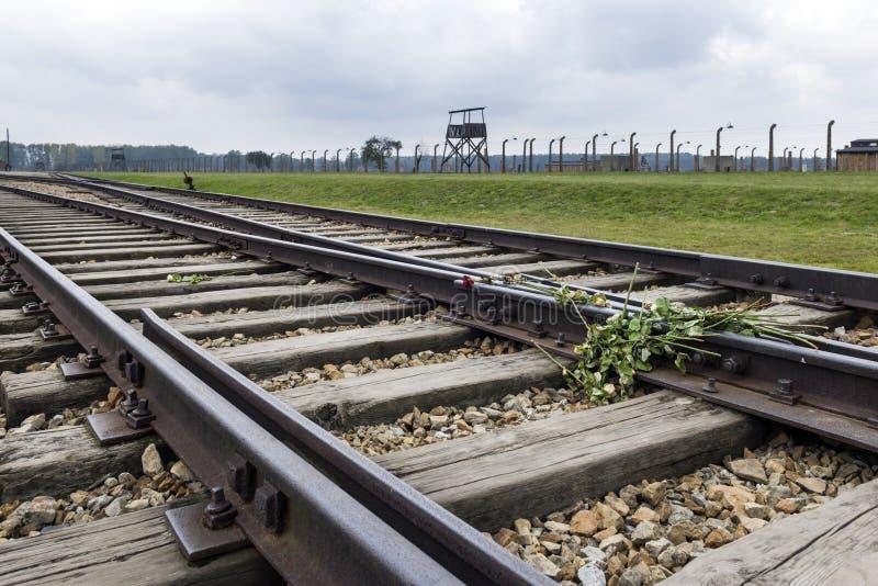 Bilden Sie Eisenbahn in Auschwitz Birkenau, Konzentrationslager, Polen aus stockbild