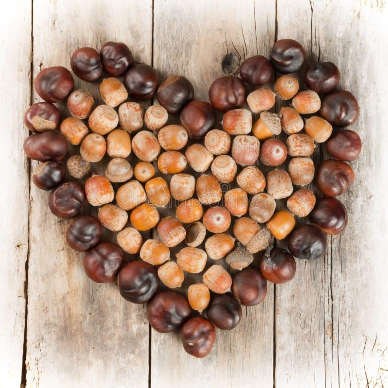 Bildende Kastanien und Eicheln, ein Herz auf einem hölzernen Hintergrund lizenzfreie stockfotos