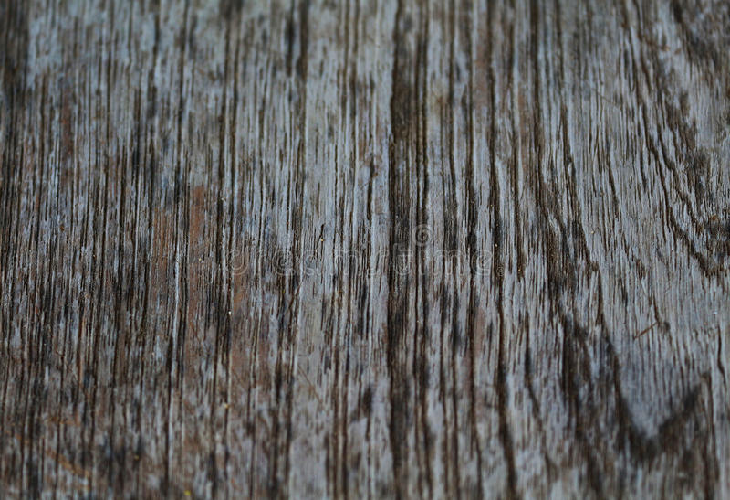 Bilder av gammalt trä, naturliga färger för bakgrunden royaltyfria bilder