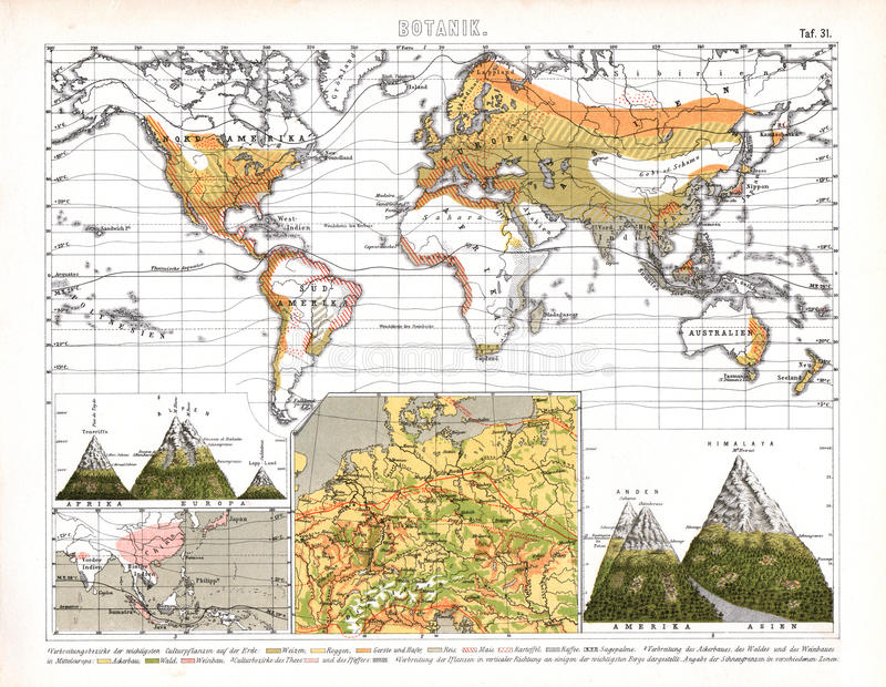 Download Bilder Botanical World Map Showing Regional Biomes Stock  Illustration   Illustration Of Blanc, Mount