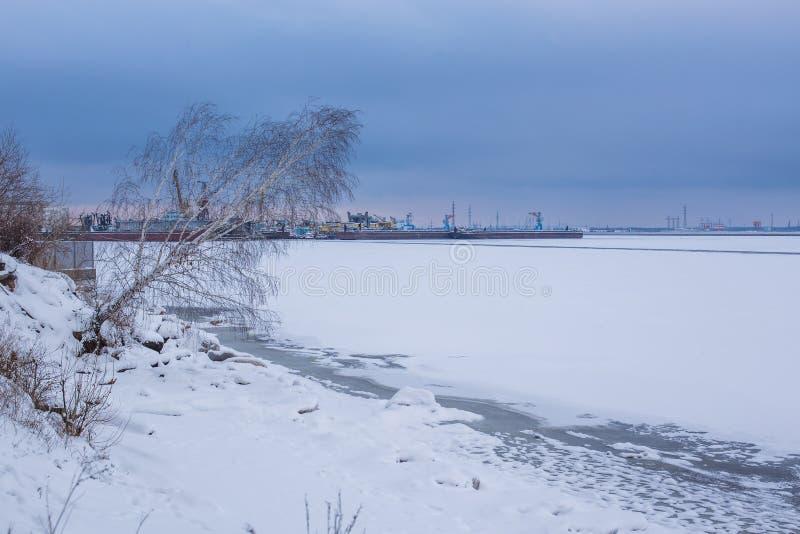 Bildhafte Landschaftsbank von gefrorenem Fluss mit gekrümmter wachsender Birke im Winter lizenzfreies stockbild