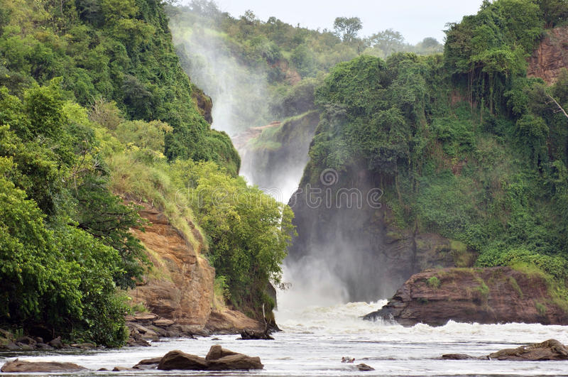 Bildhaftes Murchison Falls lizenzfreies stockbild