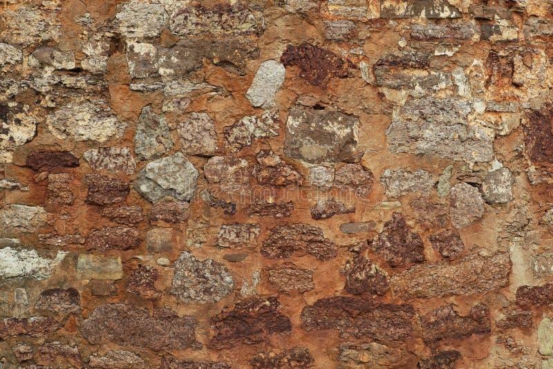 Bildlappen av den original- väggen av århundradet för th 14 med tegelstenar av skalet vaggar, bakgrundstextur tätt upp royaltyfri foto