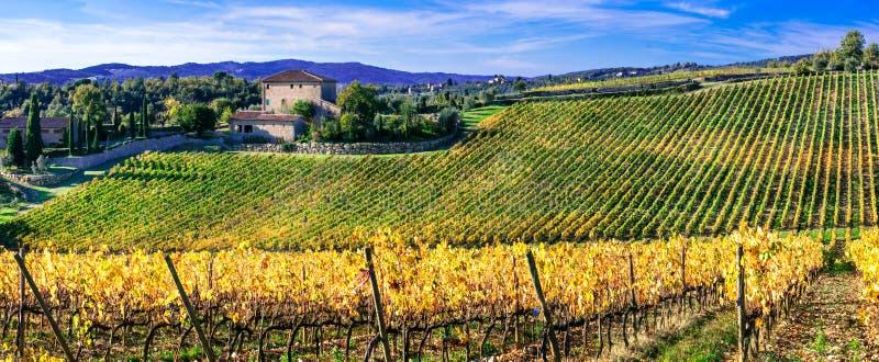 Bildmässiga Tuscany, Chiantiregion, Italien fotografering för bildbyråer