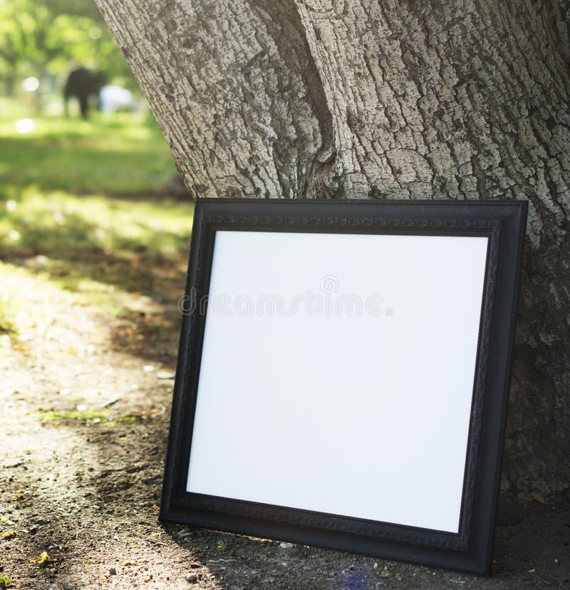Bildram på ett träd arkivfoto