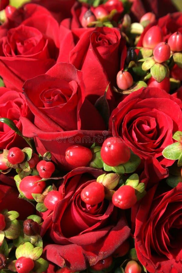 Bildschirmanzeige der Rosen lizenzfreie stockbilder
