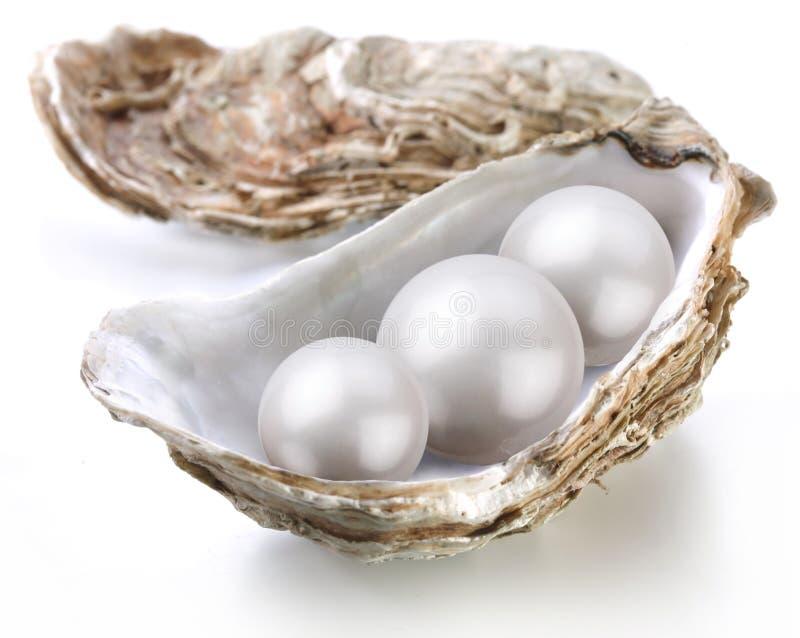Bildseifenerz perlt in einem Shell auf einem Weiß stockfotografie