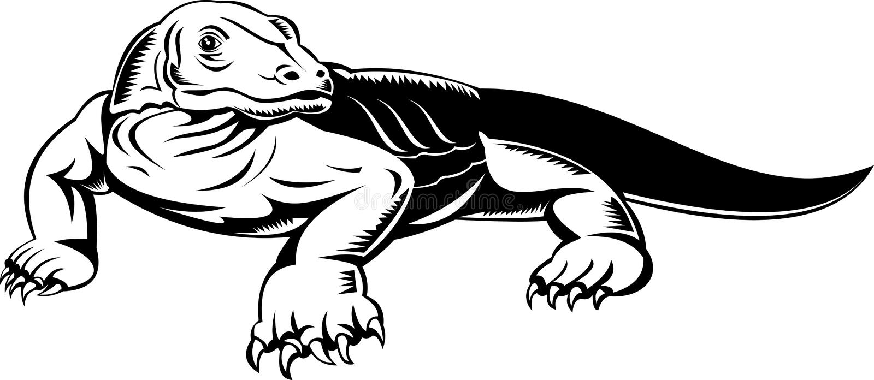 bildskärm för drakekomodoödla stock illustrationer