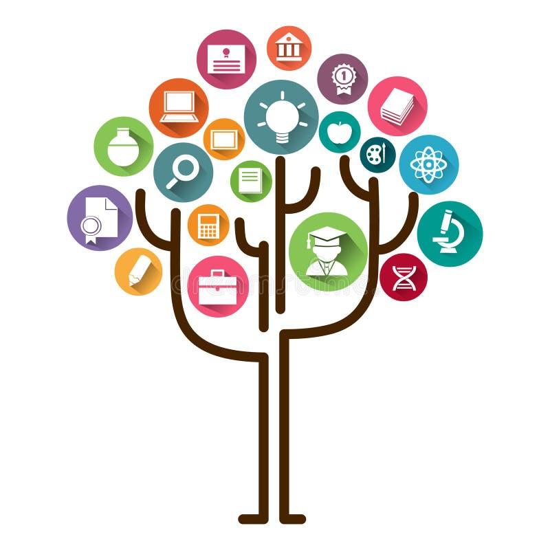Bildungsbaum-Konzeptlernen Bildungsikonen und Baumvektorillustration lizenzfreie abbildung