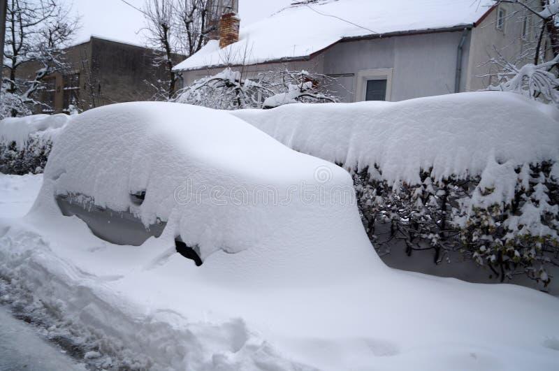 Bilen, buskarna och husen som täckas med snö royaltyfria bilder