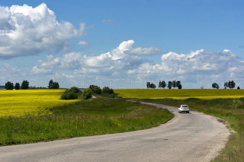 Bilen rider på den stenlade vägen bland fälten och träden fotografering för bildbyråer
