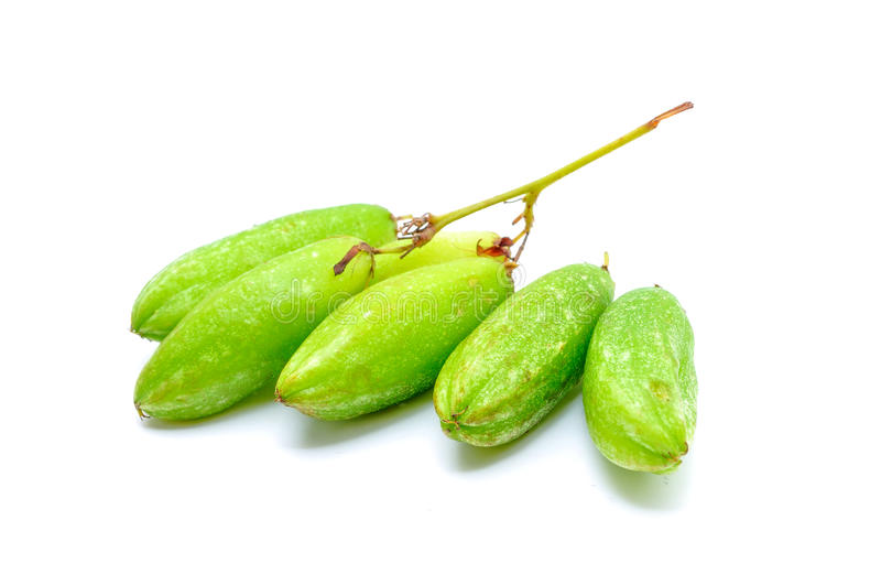 Bilimbi fruits. Of South East Asia royalty free stock image