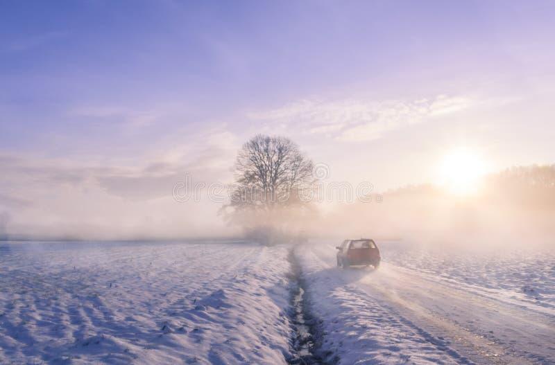 Bilkontur till och med dimma på en vintermorgon fotografering för bildbyråer