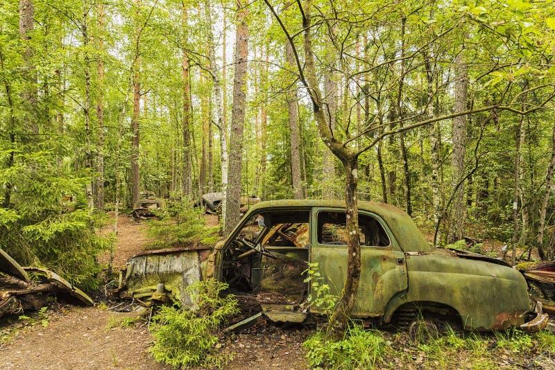 Bilkyrkogård i skogen arkivbilder