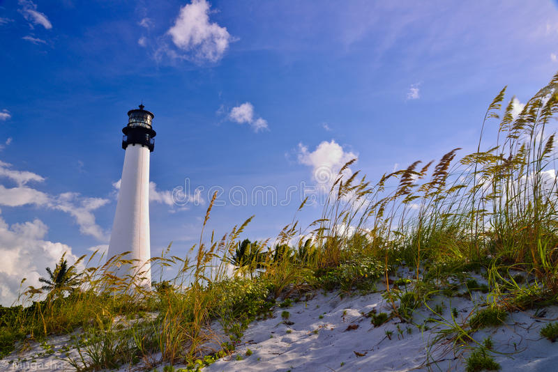 Bill Baggs Lighthouse imagem de stock royalty free