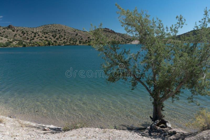Bill Evans Lake im New Mexiko nahe silberner Stadt lizenzfreie stockbilder