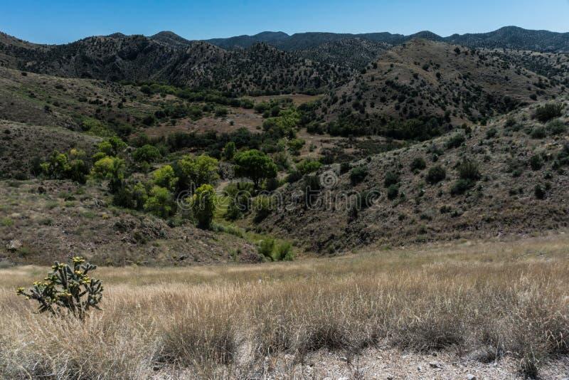 Bill Evans Lake, New Mexiko-szenische Ansicht lizenzfreie stockfotos