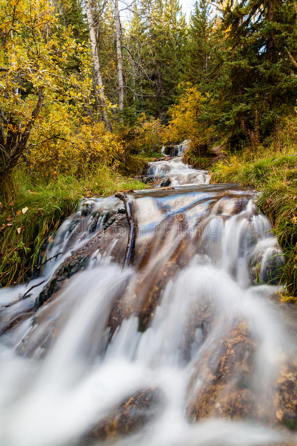 Bill Hill Springs Provincial Park, Alberta, Canada. Cascading stream at Big Hill Springs Provincial Park near Calgary in Alberta. A favorite park for hiking and royalty free stock photo