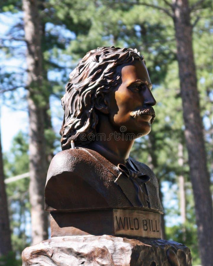 Download Bill sauvage photo stock. Image du tête, poitrine, bronze - 8654120