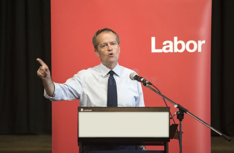 Bill Shorten australisk arbetarpartiledare royaltyfri fotografi