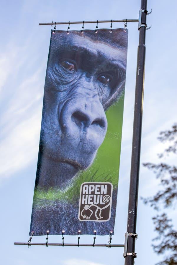 Billboard Apenheul Zoo W Apeldoorn Holandia 2019 zdjęcia royalty free