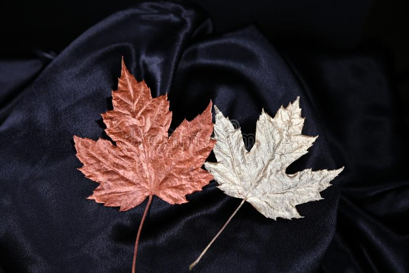Fall colours are considered luxury colours for fashion and makeup collection s stock photos