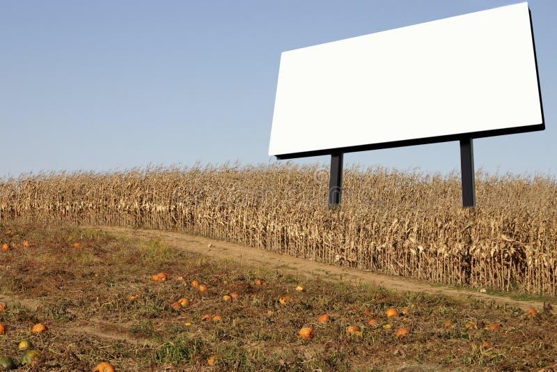 billboardu, pole kukurydzy zdjęcia stock