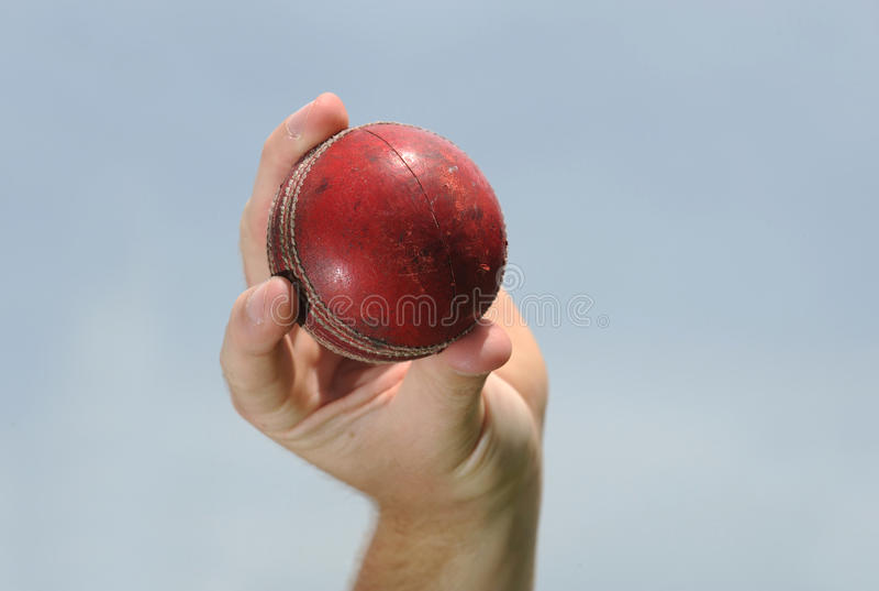 Bille de cricket image libre de droits