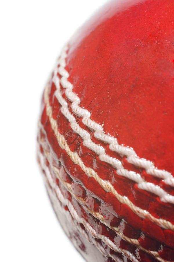 Bille de cricket images libres de droits