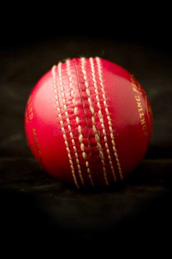 Bille de cricket neuve photographie stock libre de droits
