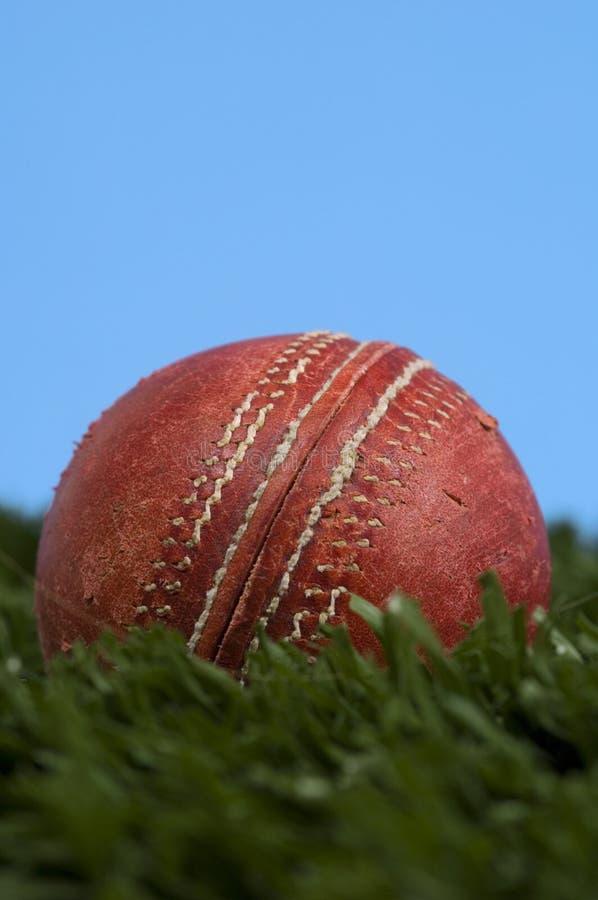 Bille de cricket sur l'herbe avec le ciel bleu image stock