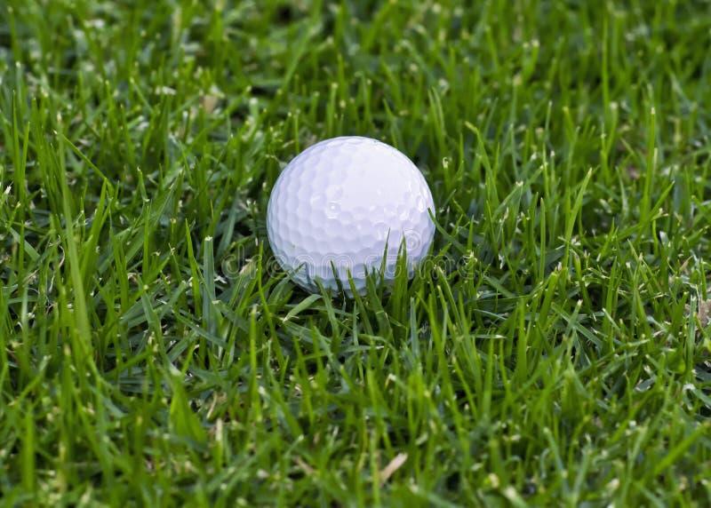 Bille de golf dans rugueux photos stock