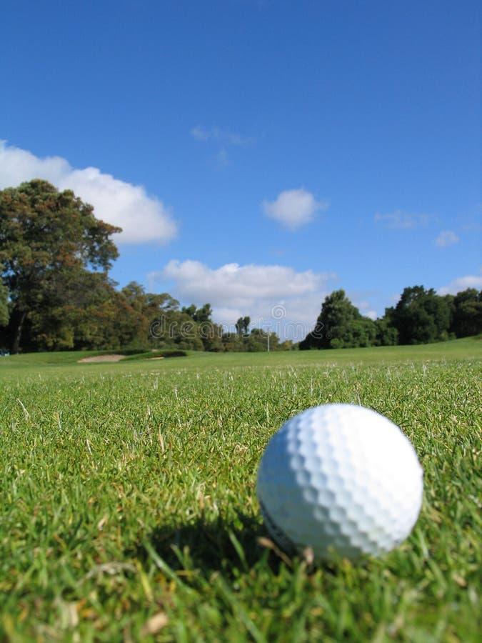 Bille de golf sur l'herbe 2 photos libres de droits