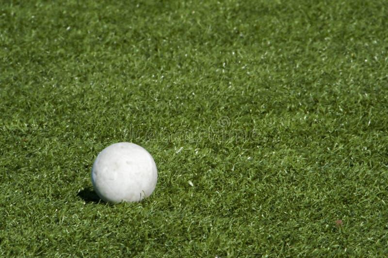 Bille de Lacrosse sur la zone de gazon. image stock
