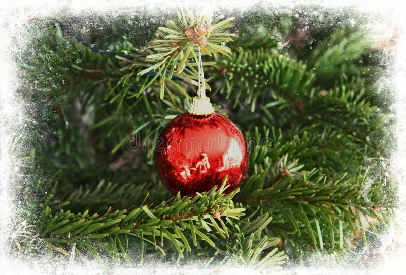 Bille en verre d'arbre de Noël encadrée dans le blanc photo stock