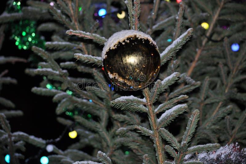 Bille sur l'arbre de Noël photos stock