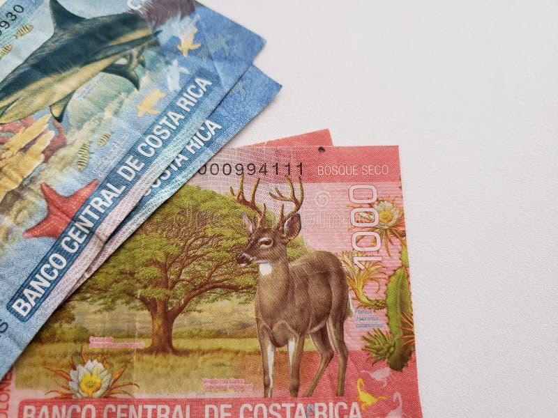 Billets de banque de Costa Rican et fond blanc photos libres de droits