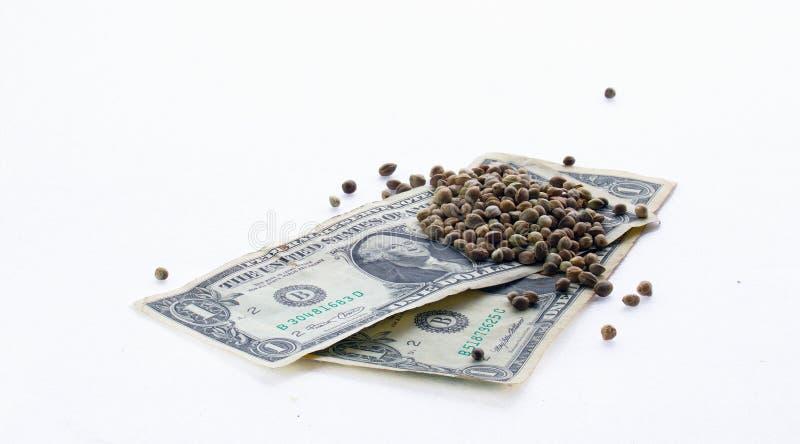 Billets de banque de l'un dollar et graines de chanvre photos libres de droits