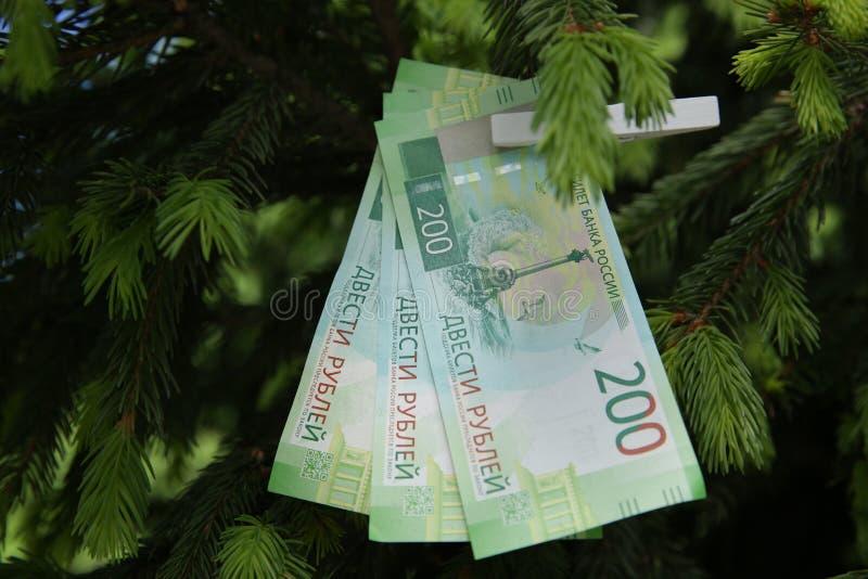 Billets de banque deux cents roubles russes Argent vert de papier d'argent liquide sur le sapin vert photos libres de droits