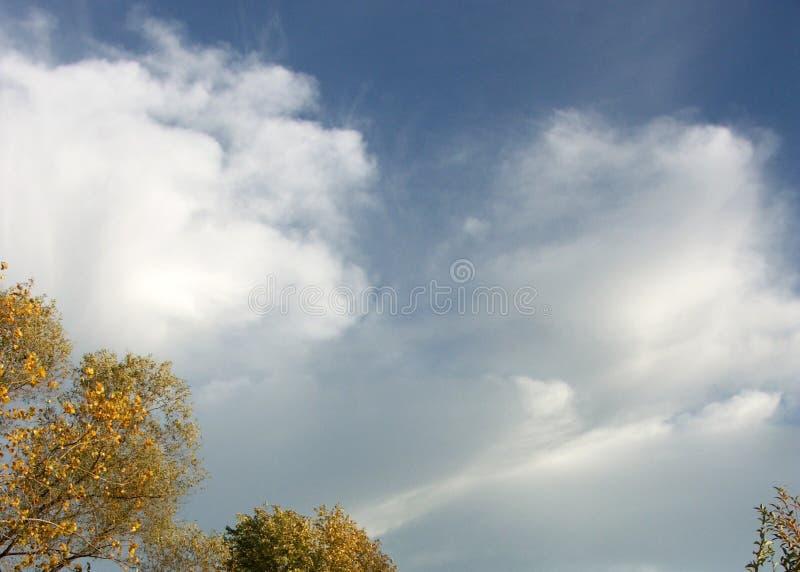 Billowy Wolken lizenzfreies stockbild