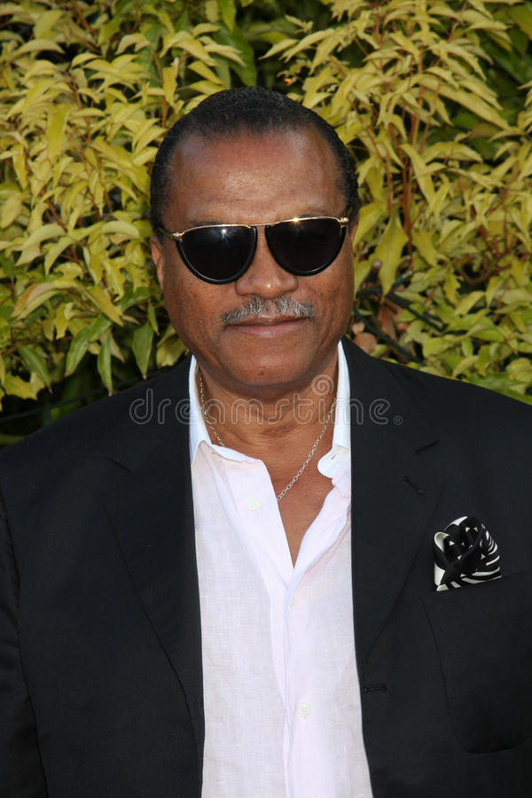 Billy Dee Williams royalty-vrije stock afbeeldingen