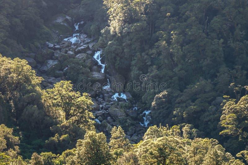 Billy Falls rujindo, situado no parque nacional de aspiração do Mt, Nova Zelândia imagens de stock royalty free