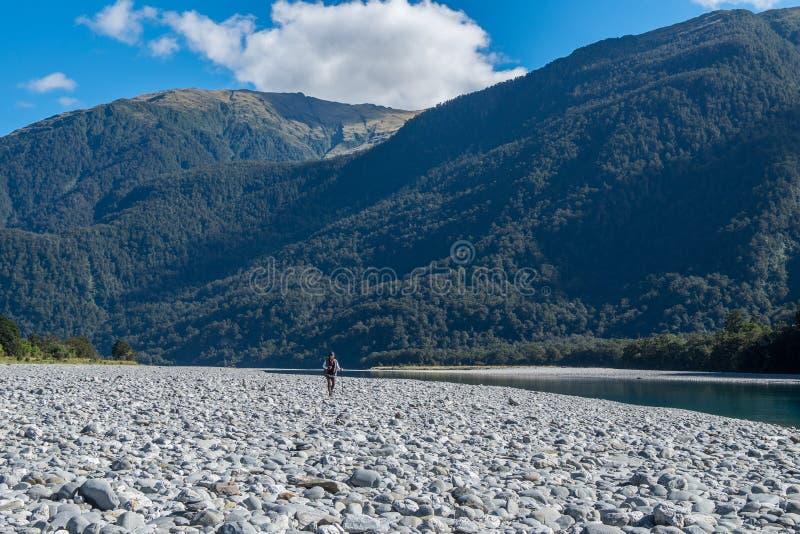 Billy Falls Track rujindo, situado no parque nacional de aspiração do Mt, Zealan novo imagens de stock royalty free