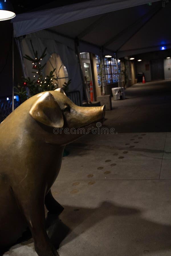 Billy le porc du marché de place de Pike la nuit image libre de droits