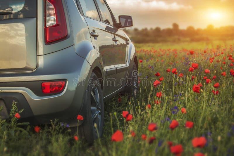 Bilresande Medel på ett naturfält som begreppsecotechno fotografering för bildbyråer