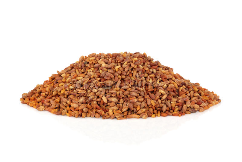 Download Bilta Seed stock image. Image of asian, white, herb, bilta - 21868913