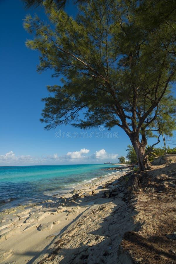 Bimini海岛垂直 免版税库存照片