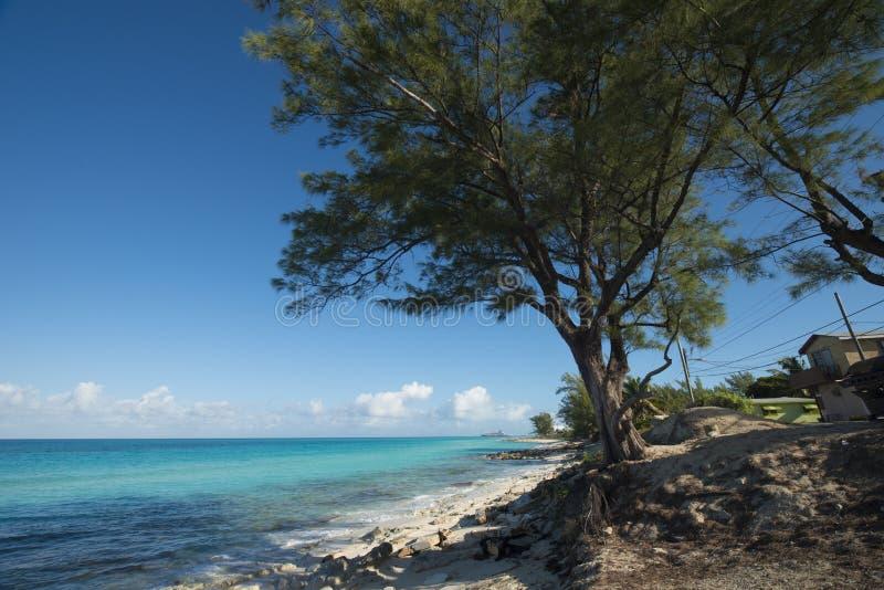 Bimini海滩海岛  图库摄影